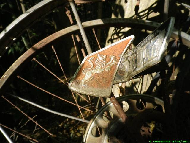 Close up of the bike's chain guard.