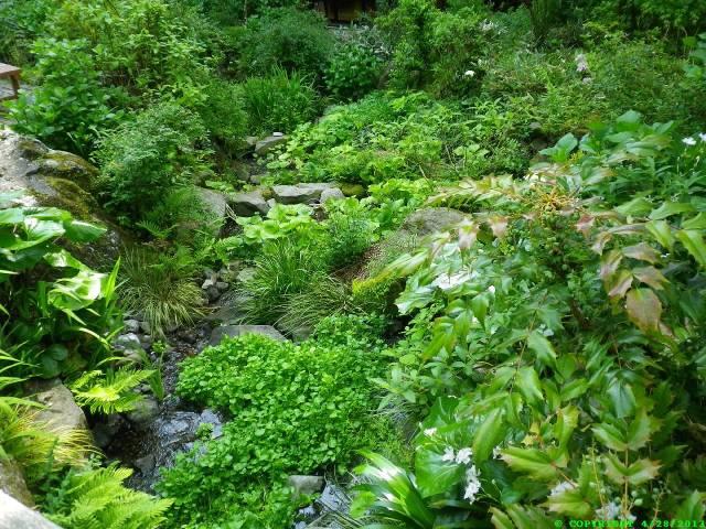 onsen2 garden