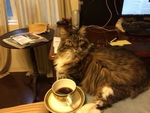 """Pusscat getting his start on the day. """"No milk in this cat's coffee!"""""""