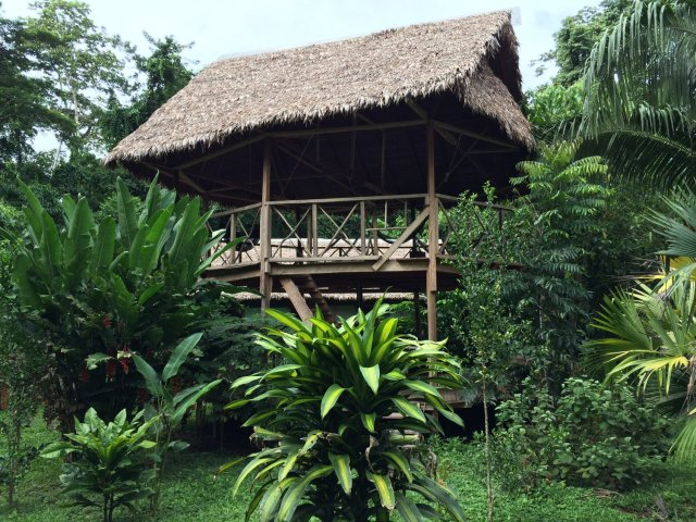 amazon-Inotawa-gazebo