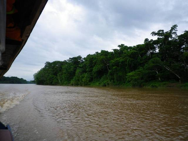 tambopata-river-2013